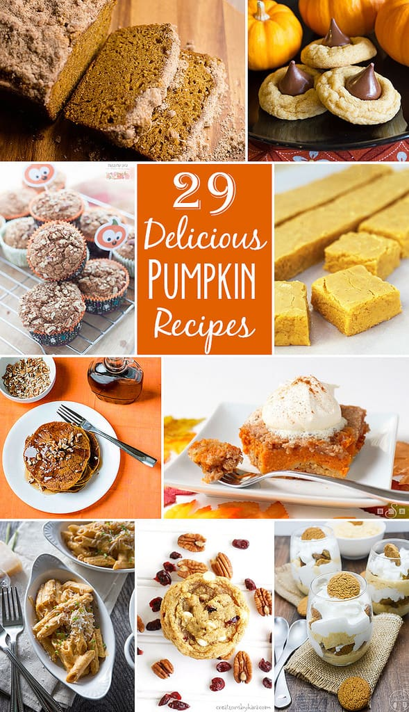 29 Delicious Pumpkin Recipes // Tried and Tasty
