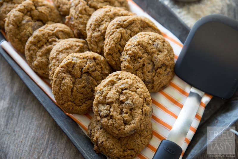 Whole Wheat Pumpkin Chocolate Chip Cookies // These cookies are phenomenal! They are made with whole wheat flour and have just enugh pumpkin to make them perfect for Halloween or Thanksgiving. Nothing screams fall like pumpkin chocolate chip cookies, and these happen to be a little bit healthier for you! | Tried and Tasty