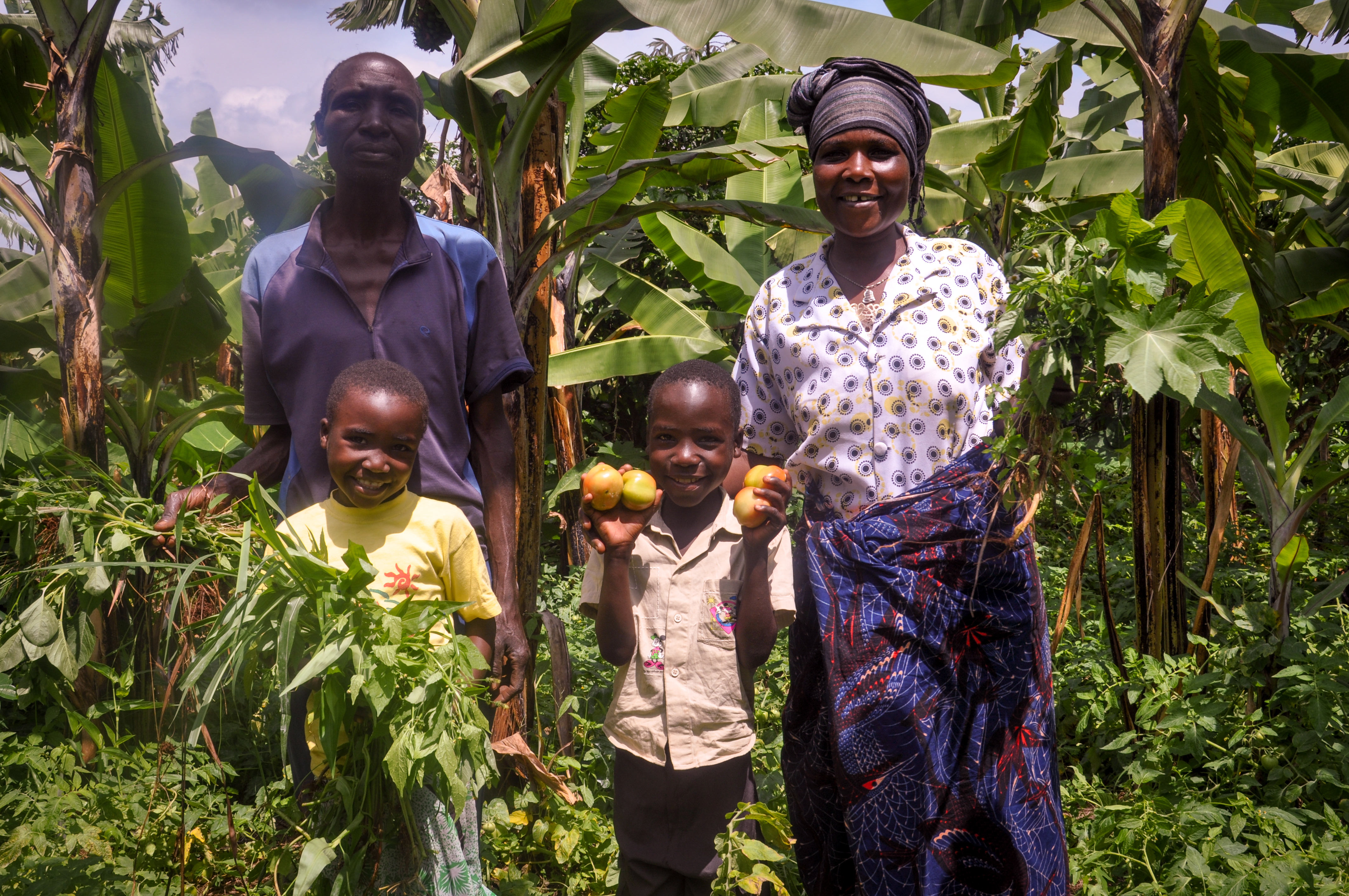 A World Vision Tanzania sponsored child Vanessa (6) (second right) standing with her family at their farm picking ripe tomatoes